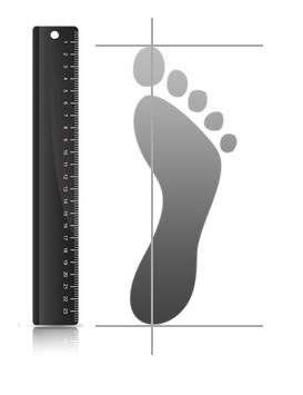 Kaip suzinoti nario dydi pedomis Vyriski seksualus nuotrauku dydziai