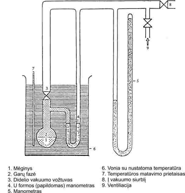 Lytiniu organu gyvunu dydis
